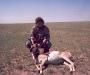 antelope hunting 4