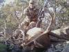 new mexico elk hunts 6