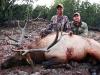 new mexico elk hunts 5