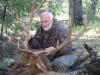 new mexico elk hunts 28