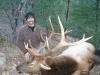 new mexico elk hunts 43