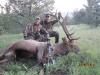 new mexico elk hunts 35