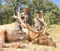 new mexico elk hunts 32