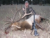 new mexico elk hunts 39
