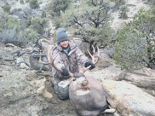 new mexico mule deer hunts 13