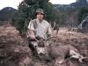 new mexico mule deer hunts 4