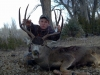 new mexico mule deer hunts 11