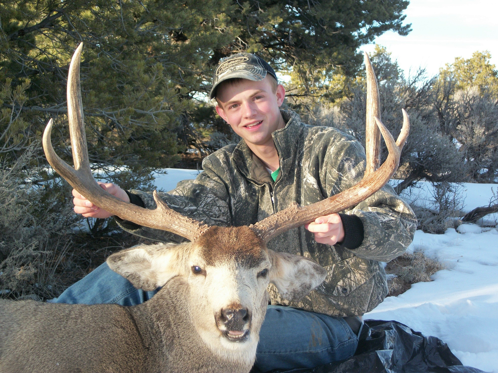 new mexico mule deer hunts 9
