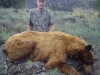daniel-bear 2012