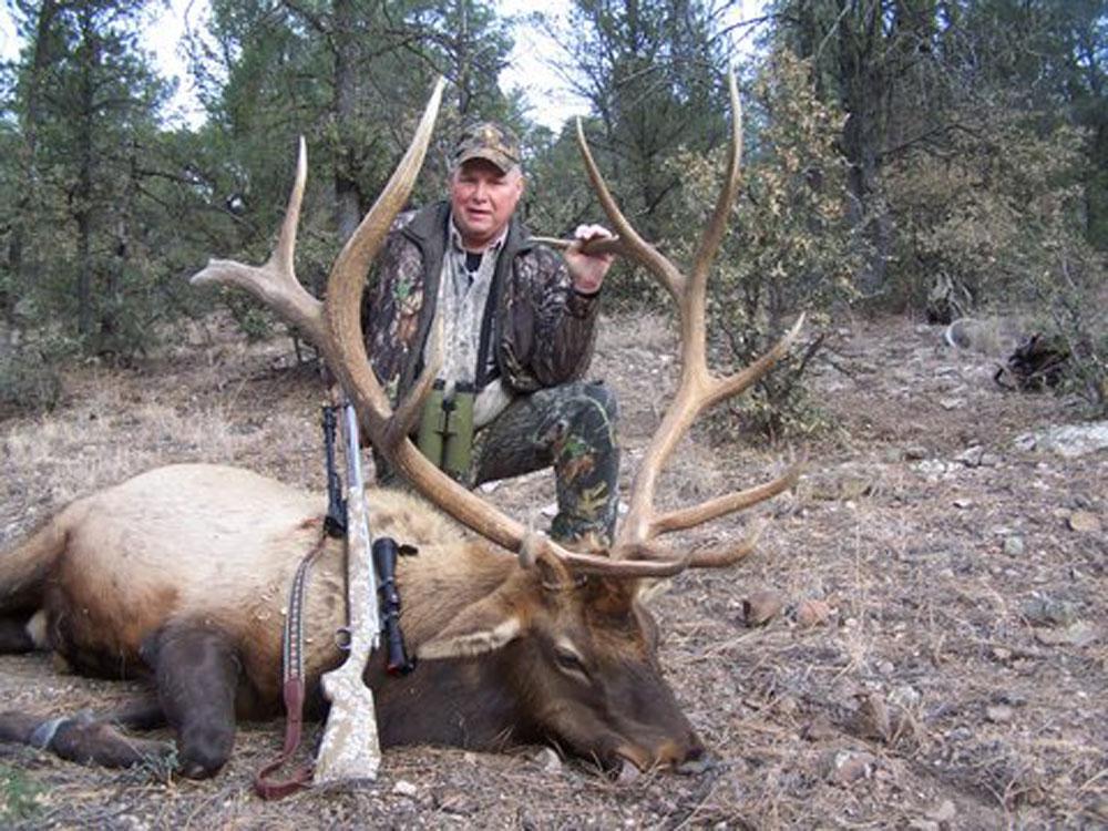 new mexico elk hunts 9
