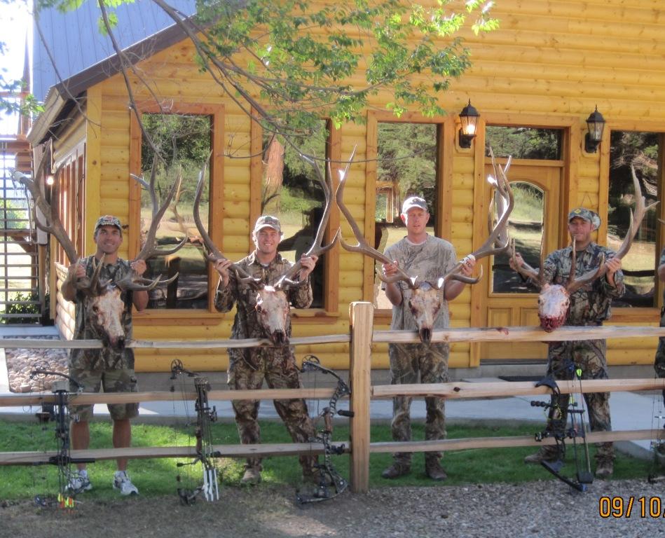 new mexico elk hunts 40