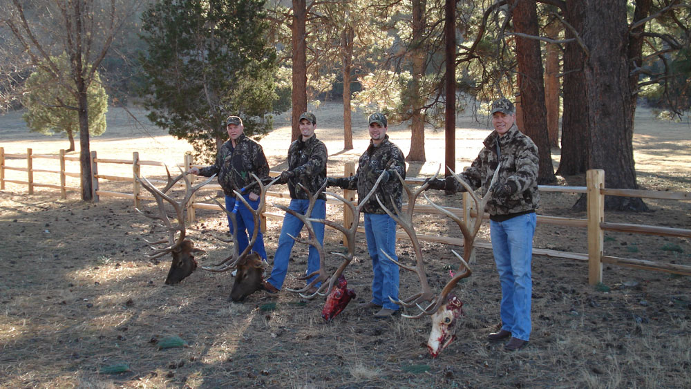 new mexico elk hunts 8