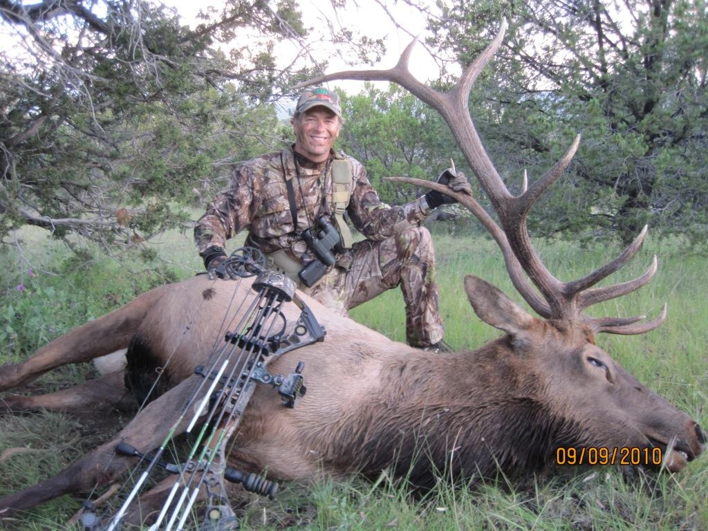 new mexico elk hunts 34