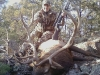 new mexico elk hunts 6
