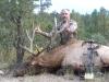 new mexico elk hunts 29