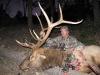 new mexico elk hunts 3