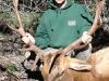 new mexico elk hunts 11