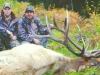 new mexico elk hunts 17