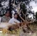 new mexico elk hunts 23