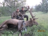 new mexico elk hunts 35