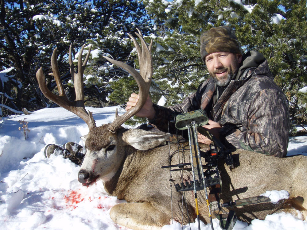 new mexico mule deer hunts 8